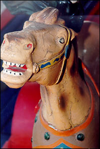 Detailed photo of one of the horses