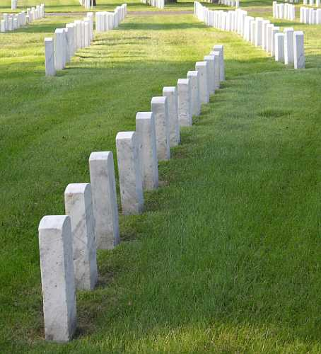 The rows of tombstone create a somber but poignant reminder.