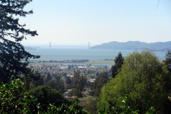 View of Golden Gate Bridge from the Berkeley Municipal Rose Garden