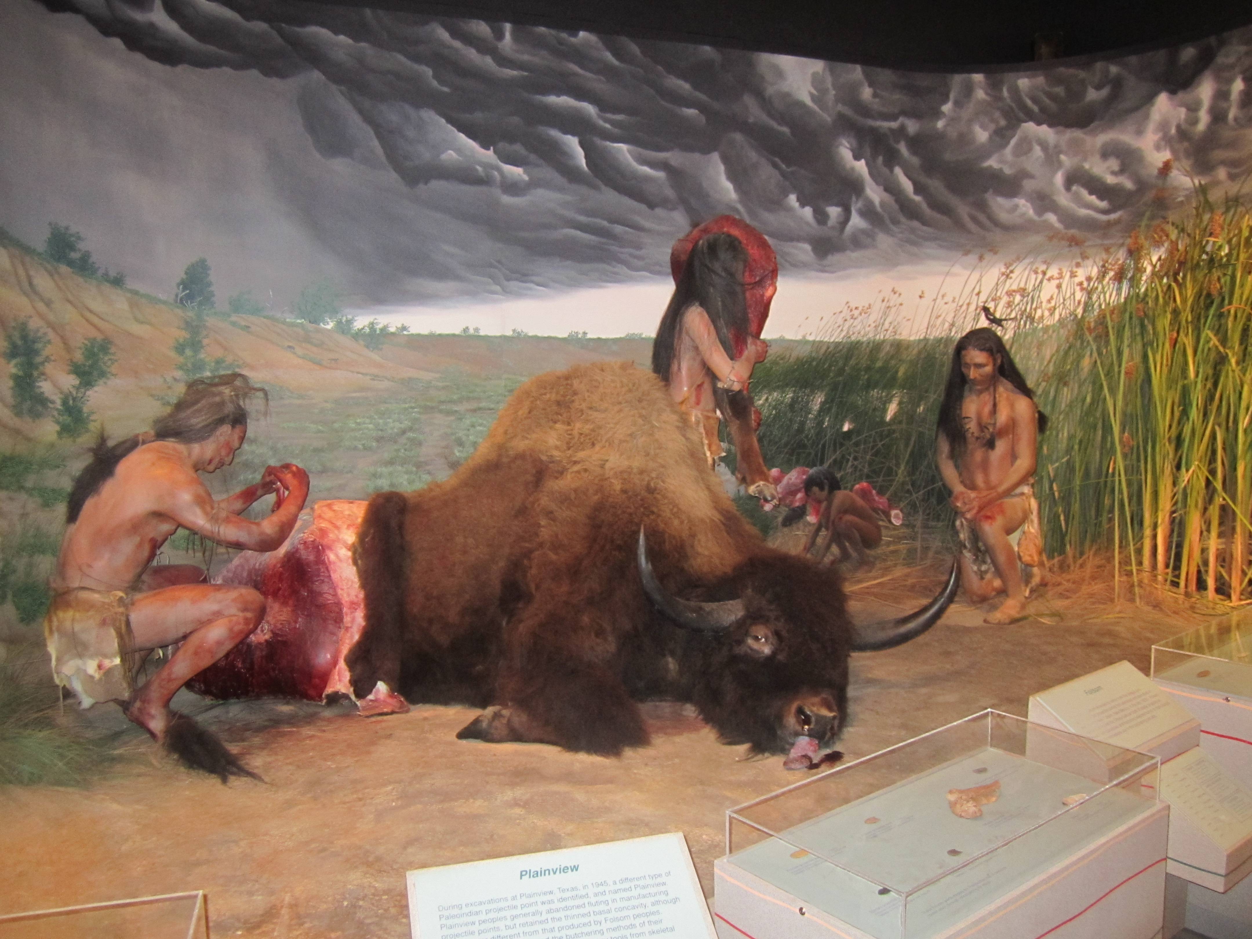Bison Butchering Exhibit at the Lubbock Lake Landmark