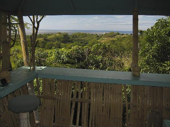 View towards the vegetation and the beach from the top floor of the Hooch cabins.