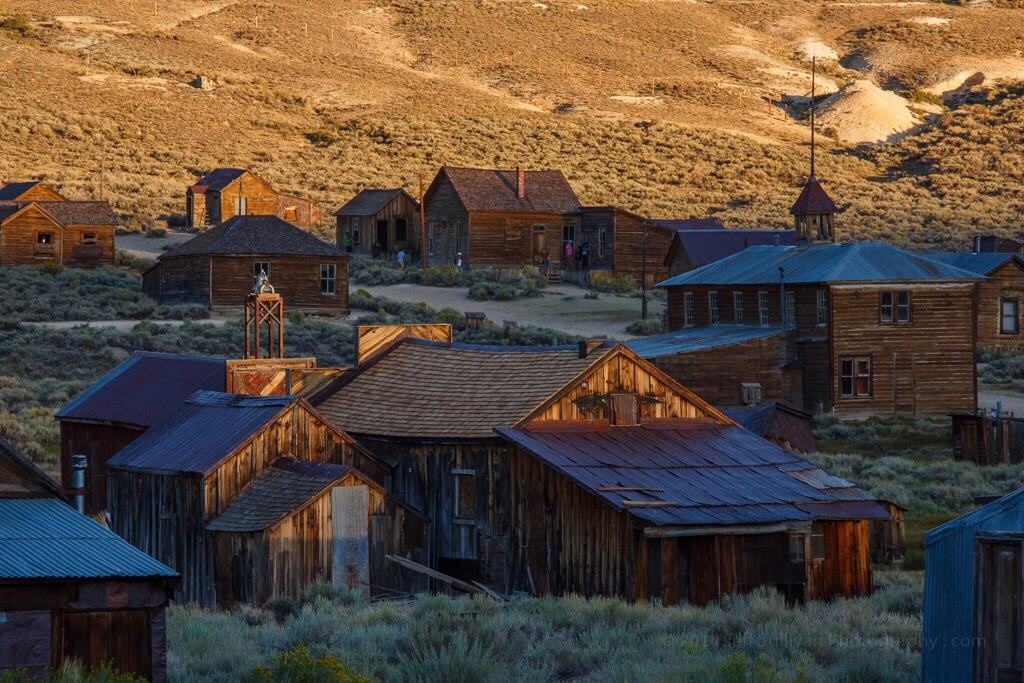 Bodie in August, 2014.