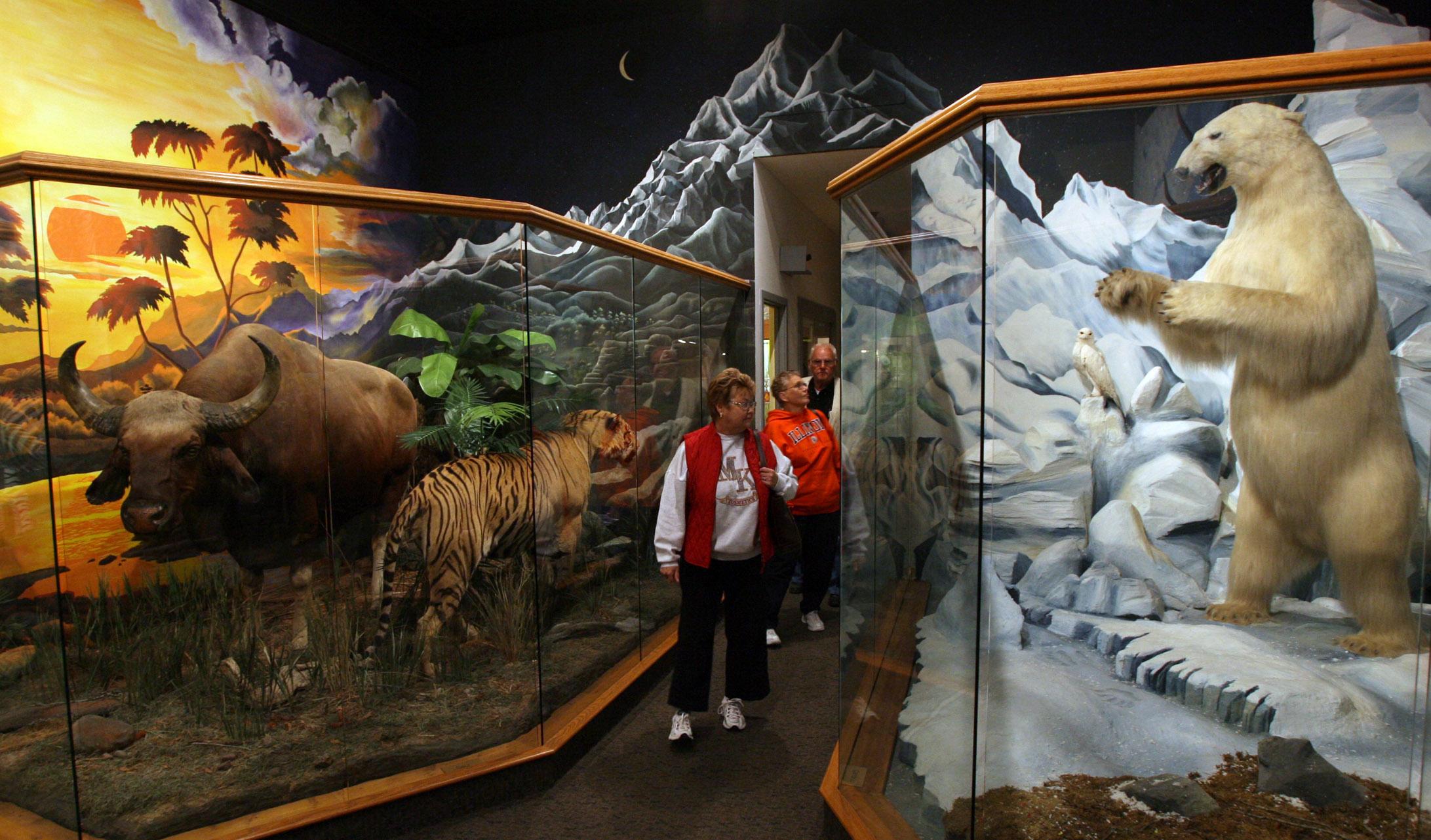 Dacotah Prairie Museum Interior