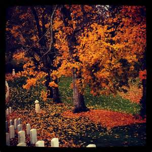 Lexington National Cemetery Fall