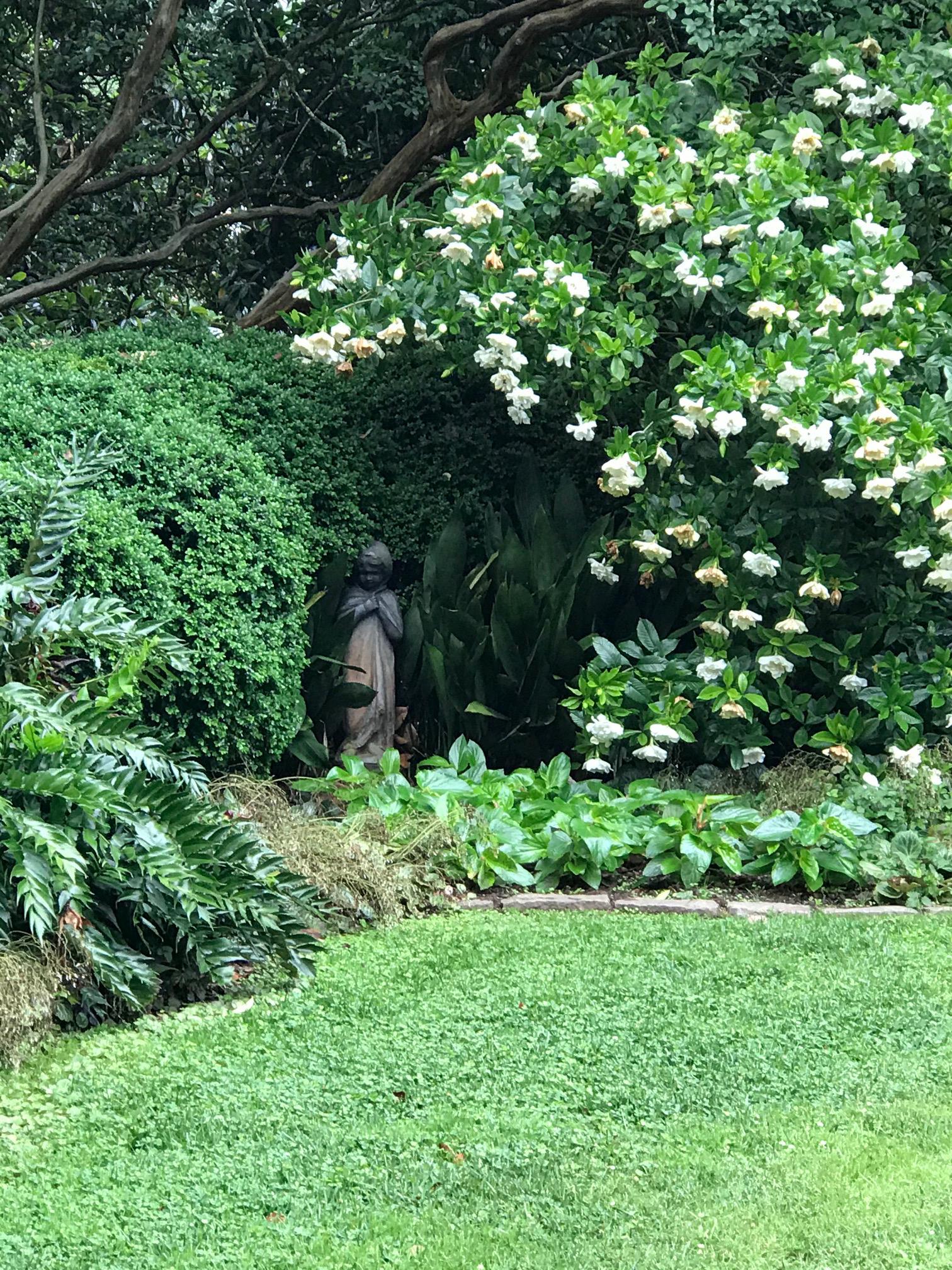 Cornelia's Garden