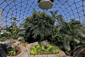 Interior of the greenhouse