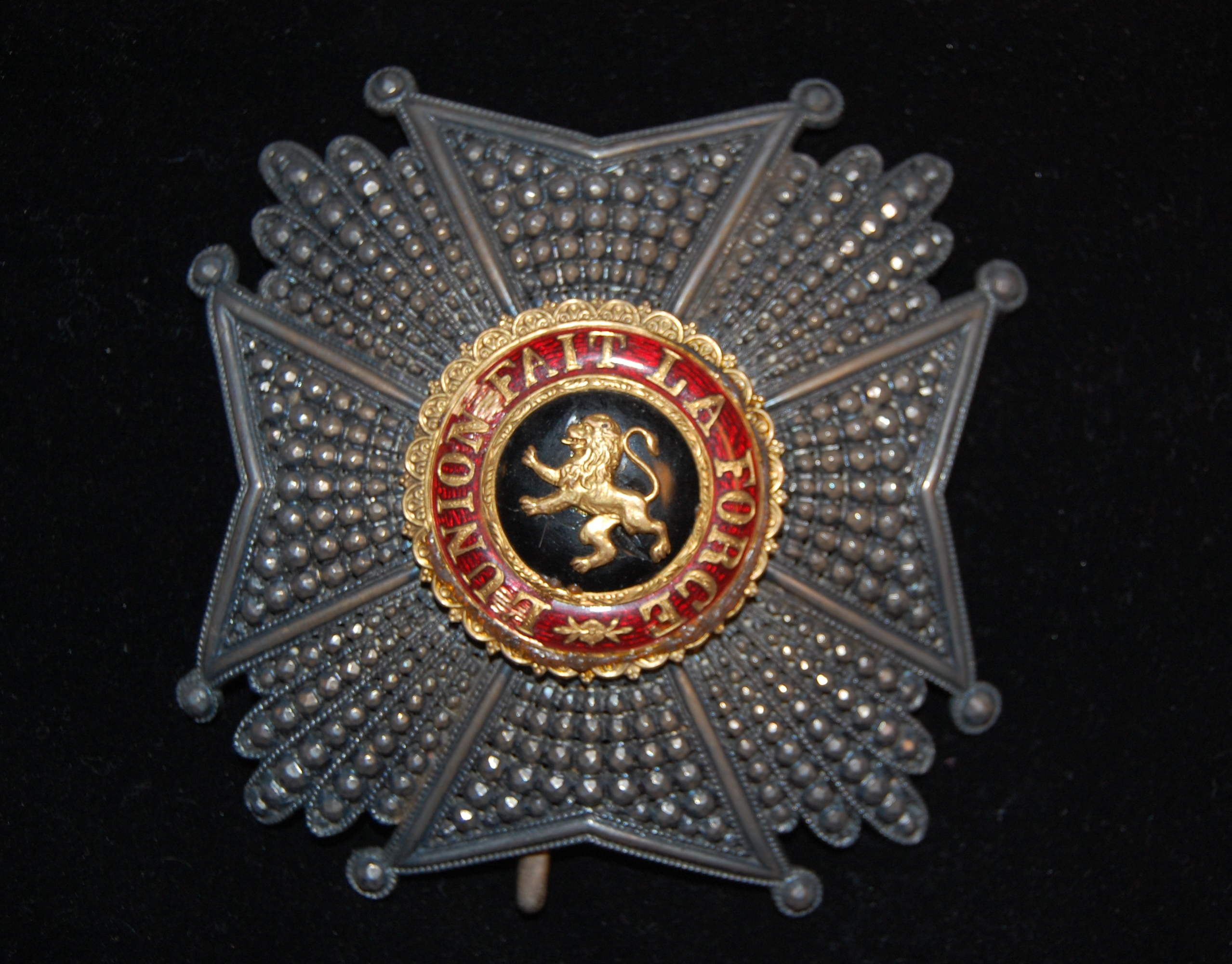 Order of Leopold Medallion as Presented to Thomas Green Clemson by King Leopold I (on display in this room)