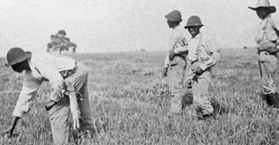 Sharecroppers working the fields of Shirley Plantation sometime after the Civil War