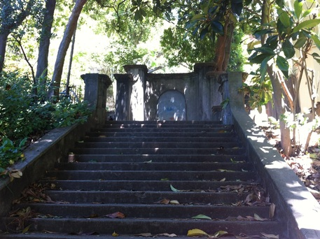 The first 33 steps on Orchard Lane