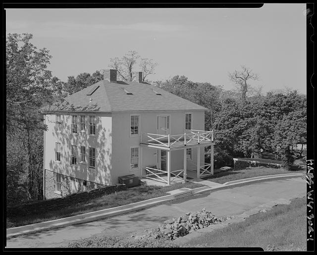 Building, Window, Black, Tree