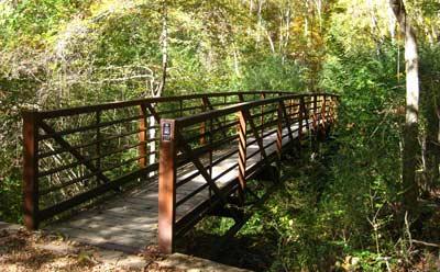Footbridge on Bailey's Woods Trail