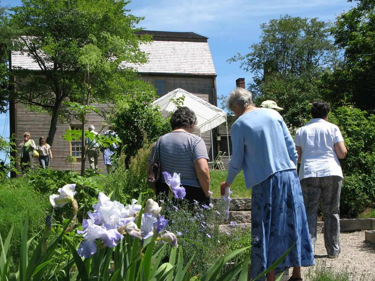 Garden Tours at the Tate House Museum