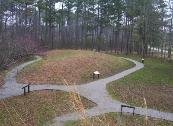 The crescent mound at the Owl Creek site