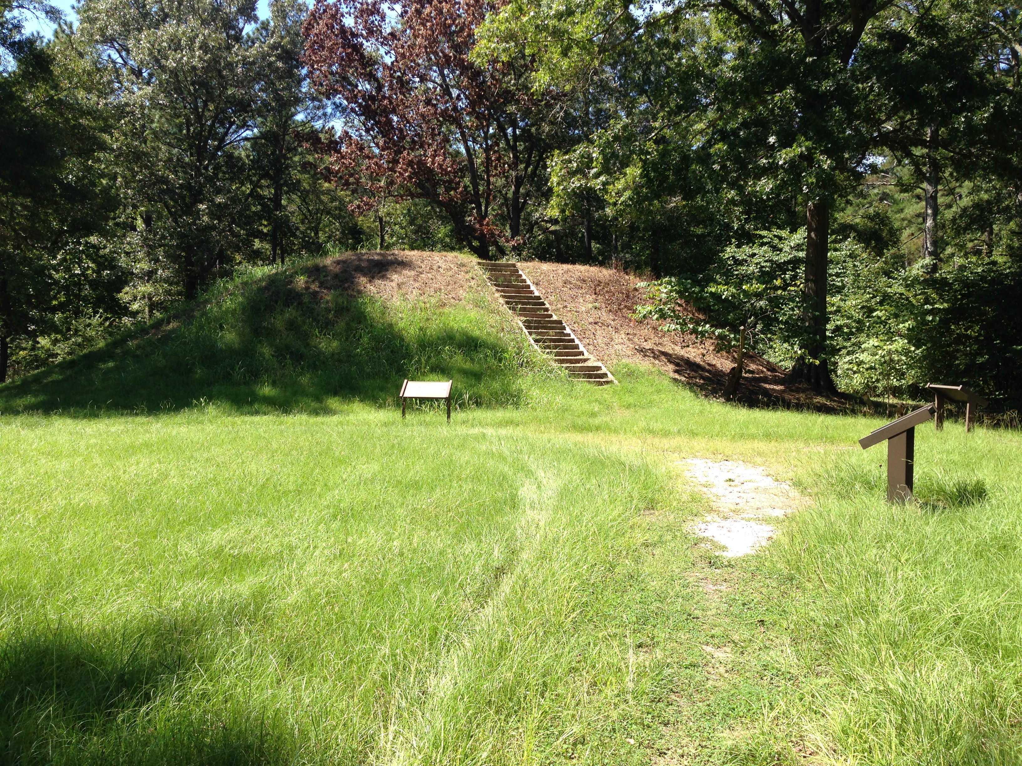 the platform mound, the largest of the mounds at the site