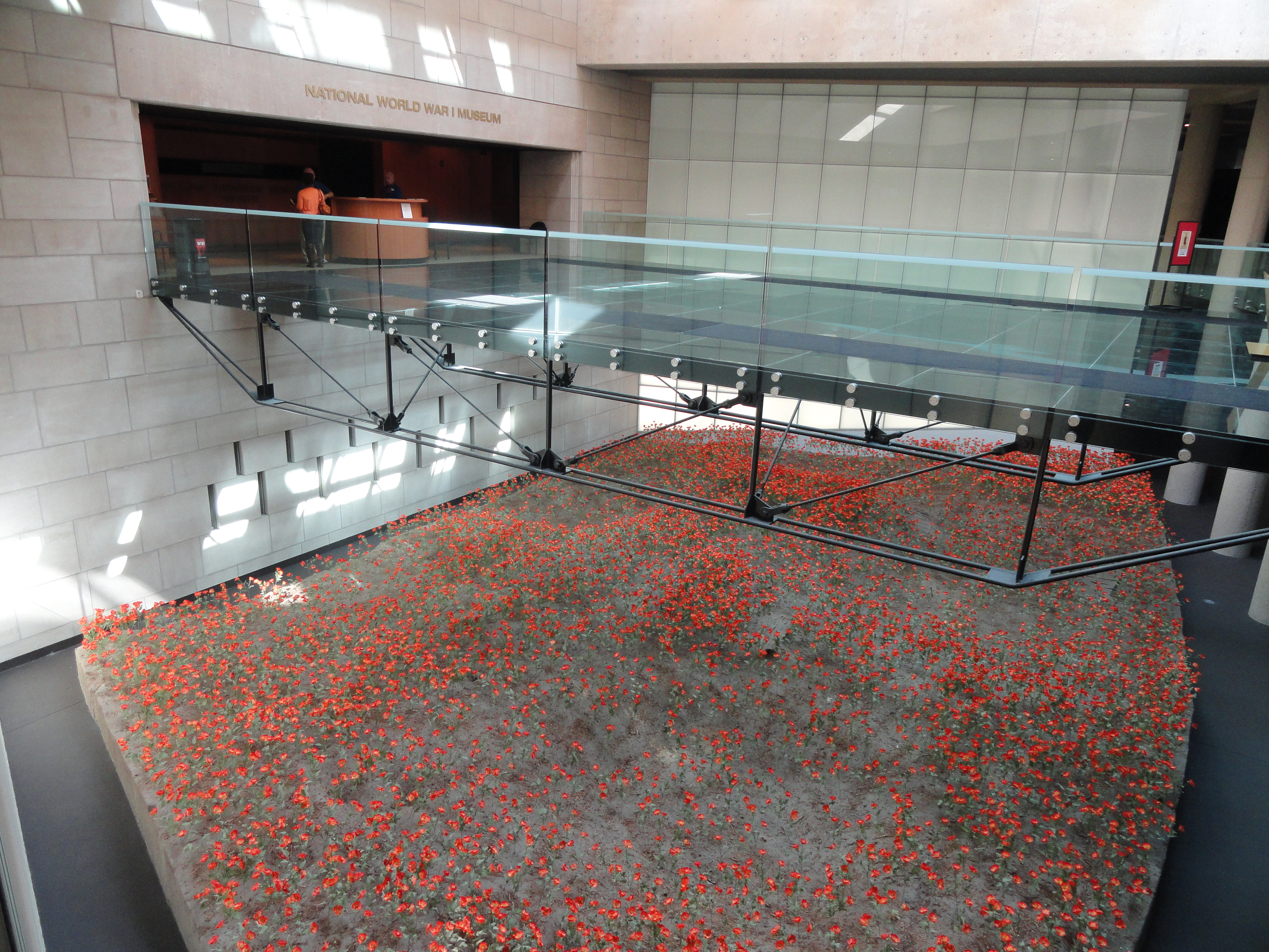A field of 9,000 red poppies, each one representing 1,000 combatant deaths