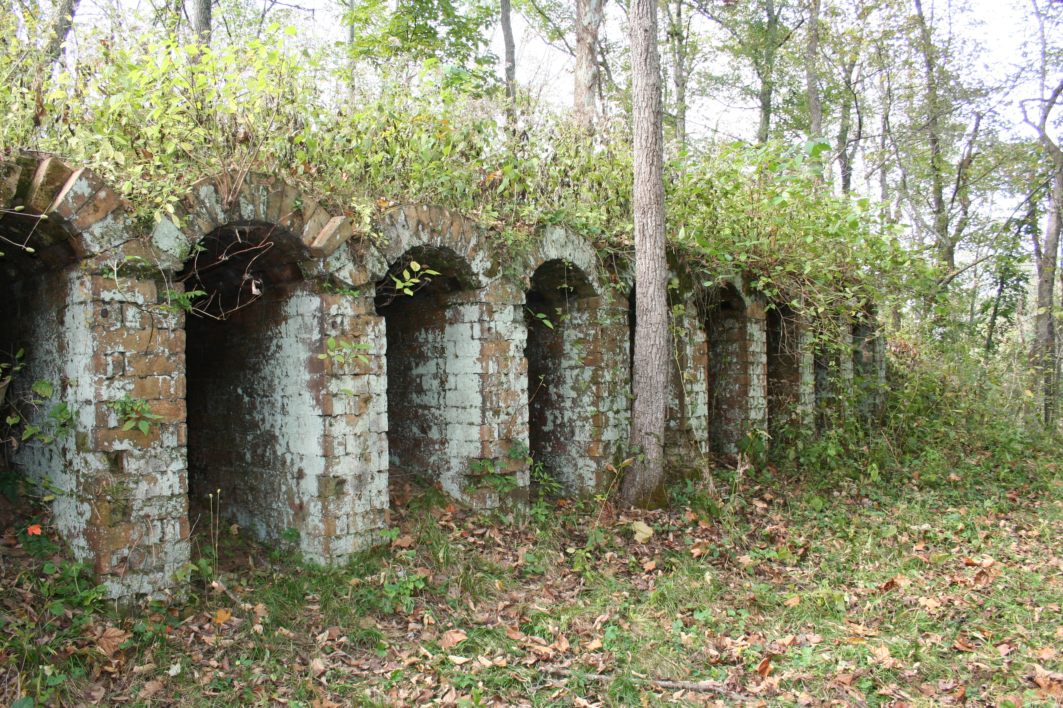 Belgium coke ovens constructed by Rader within the forest