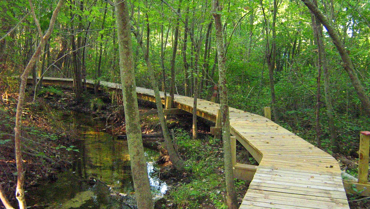 The nature center has three miles of trails