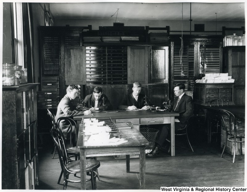 Entomology, or the study of insects, is important to agriculture. Here, four men take notes and peer through microscopes surrounded by insect collections. Photo courtesy the West Virginia and Regional History Center, WVU Libraries.