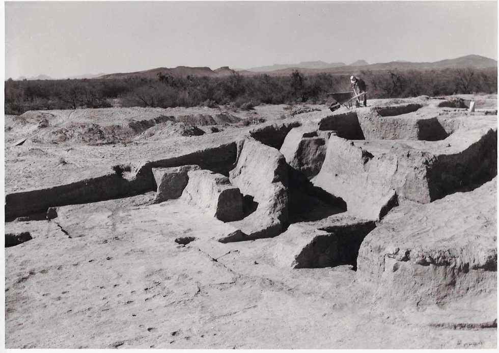 Photo taken during the excavation of site (1958-62). Courtesy of Arizona State Museum
