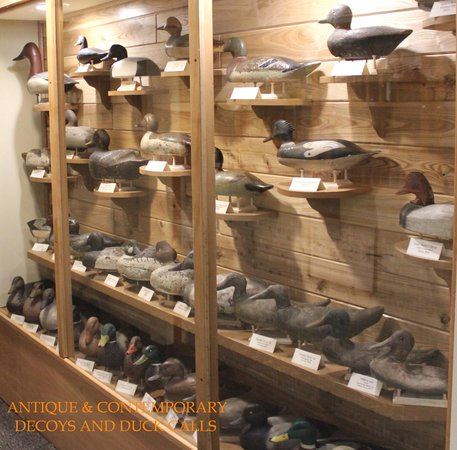 Some of the duck decoys on display