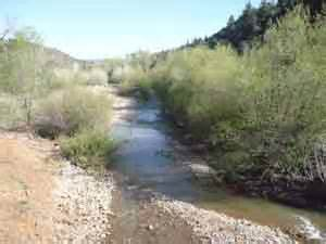 A section of Cibecue Creek as it looks today