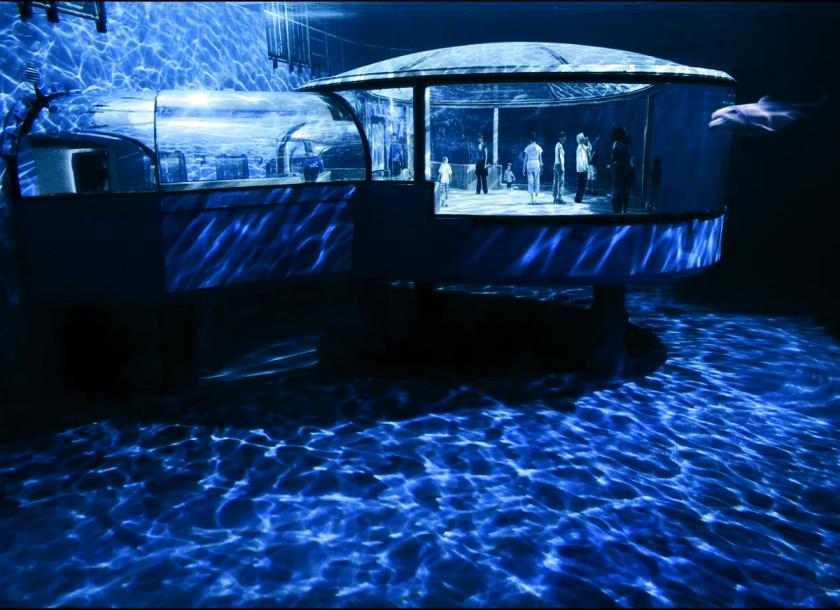 Dolphin Pavilion