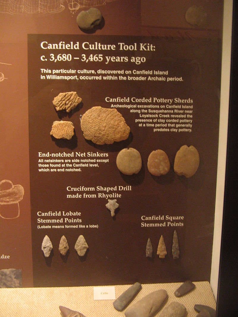 Some artifacts found on the island