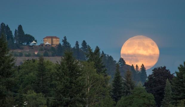 The Washington moon over the estate.