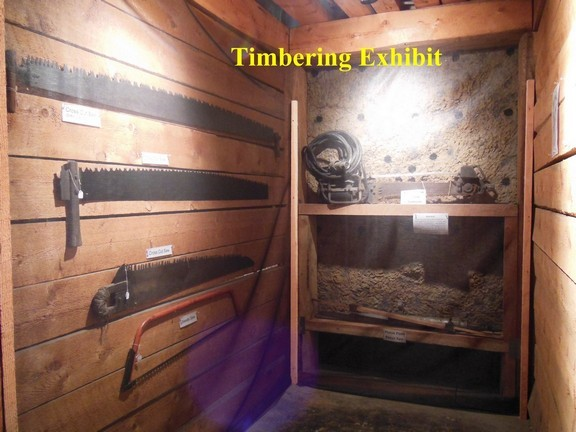 Timbering exhibit located within the museum.