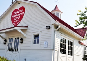 Coker Farms (Photo courtesy of the City of Hartsville, SC)