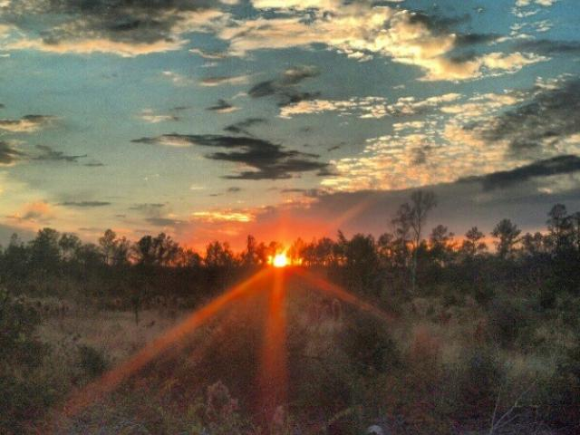 Sunrise over The Big Thicket National Preserve