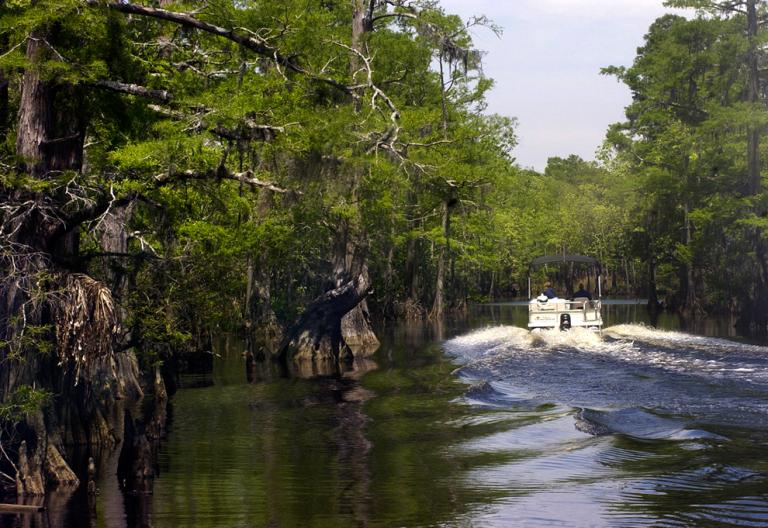 A boat touring the preserve's vast swamp lands.