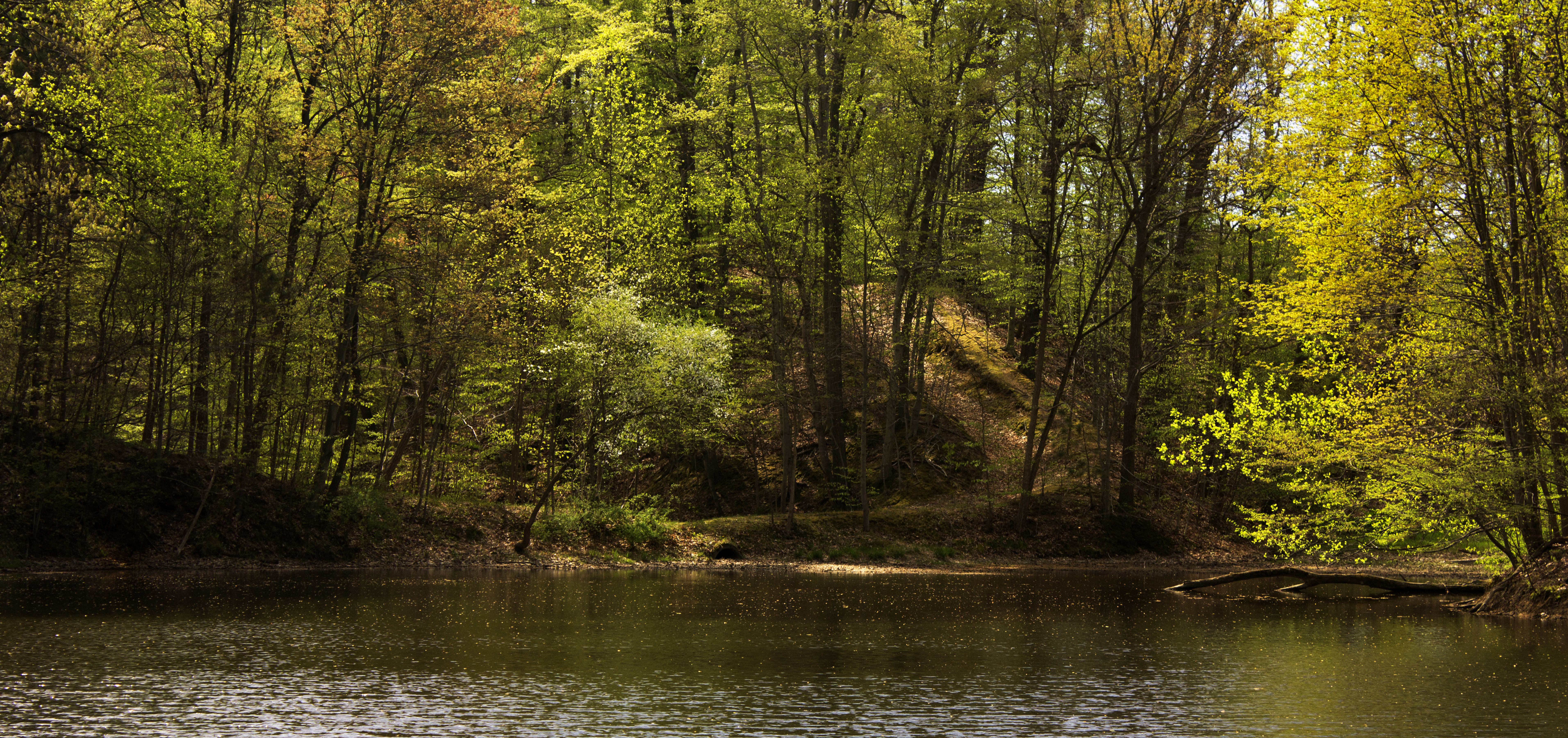 Pittenger Pond was created with an earthen dam. The pond was stocked with small mouth bass and a favorite area for the family. The dam has since been removed.