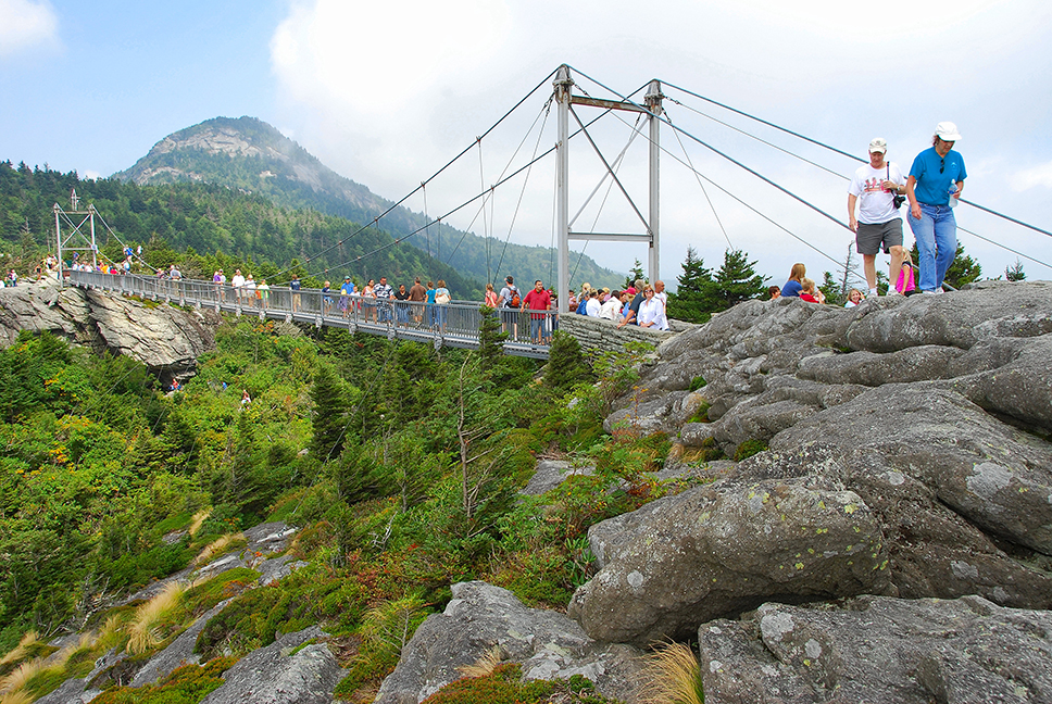 The park features a pedestrian suspension bridge