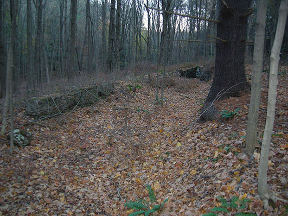 Remains of the millrace that was part of a mill owned and operated by Wilford's father, Aphek Woodruff, Avon, Connecticut, November 2007.