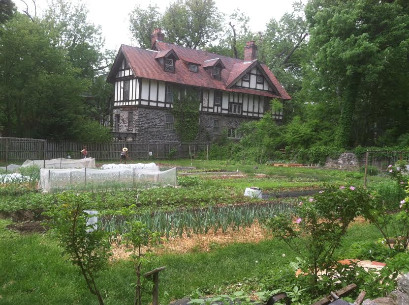The Home Farm, late Spring 2015