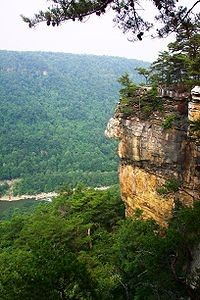 There are several hiking trails in the area, including one that will take you to the edge of Lovers' Leap