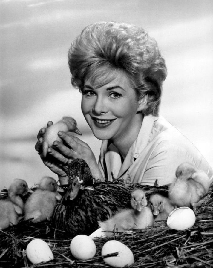 Photo from the television program General Electric True. Jan Shepard plays a Milwaukee newspaper reporter who is assigned to write a story about a mother mallard who has built her nest on a river piling in Milwaukee's downtown.