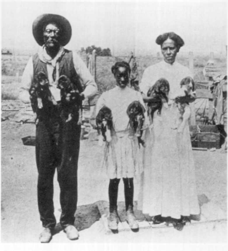 William Johnson, Iva Melton, Laura Bell: Some of the black Mormon pioneers of the South in Pueblo.