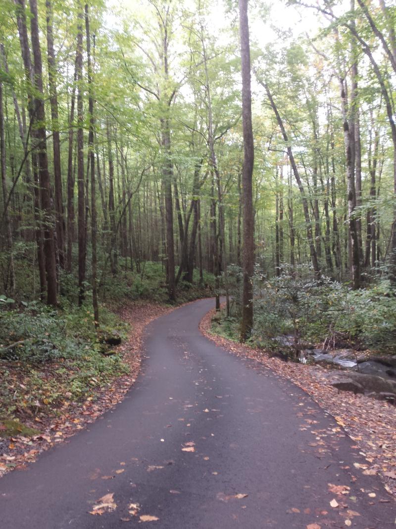 The serene motor trail.