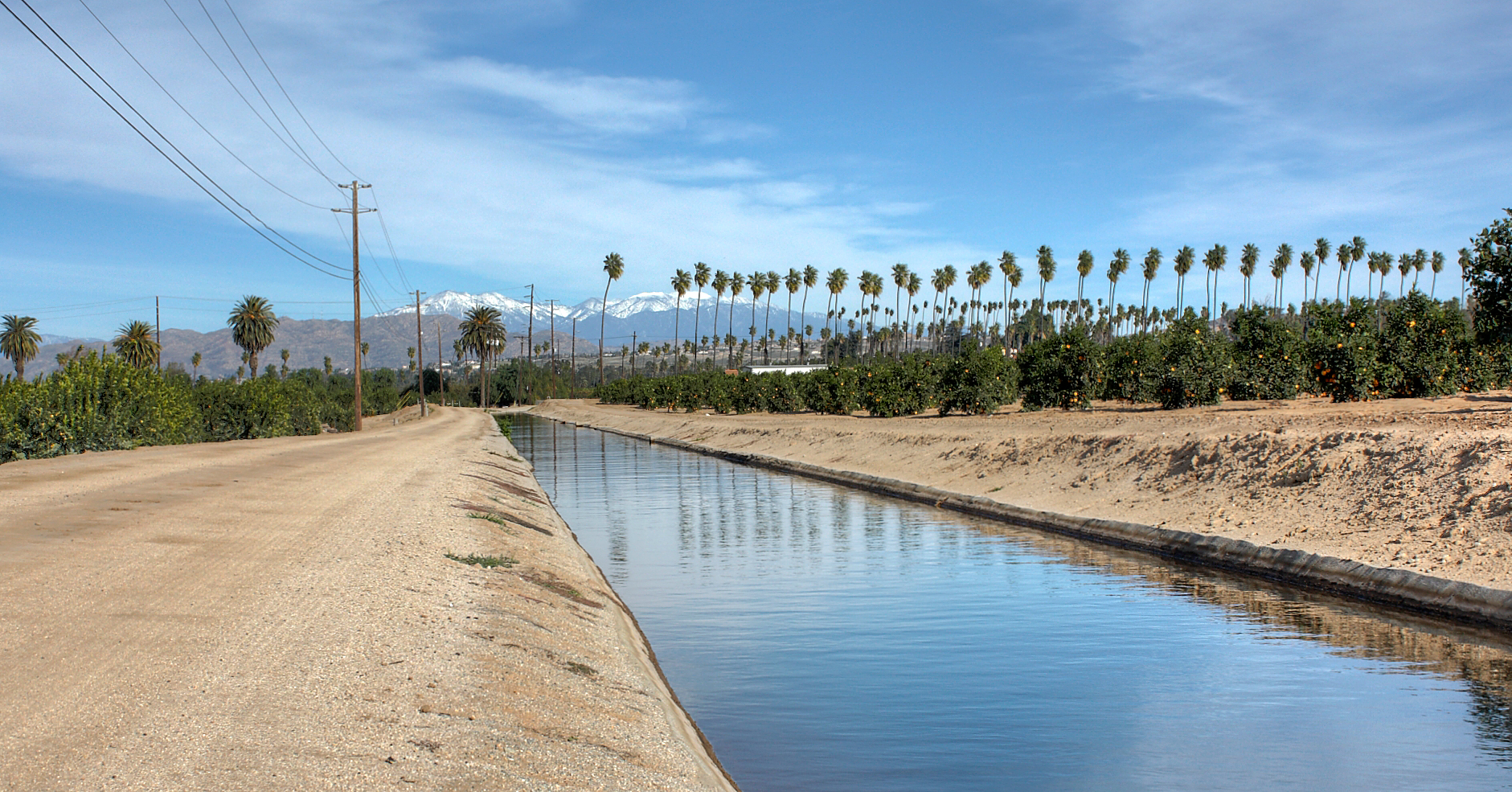 Gage Canal with a citrus grove on the right.