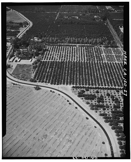 Old aerial photo of the canal and the farms it supplied.