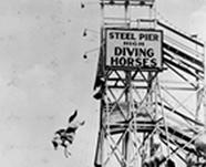 Diving Horse Act, circa 1931
