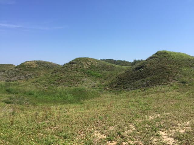 The sandy mounds of Fort Fisher which allowed the fort to absorb cannon fire