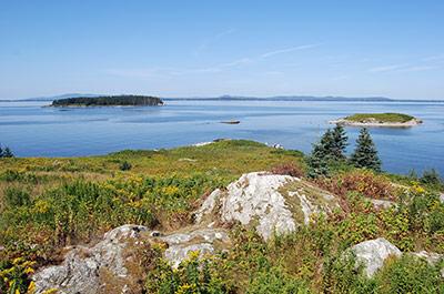 Pond Island