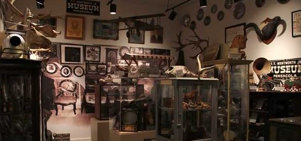 The museum is full from wall to wall with hundred of items of artifacts and miscellanea.