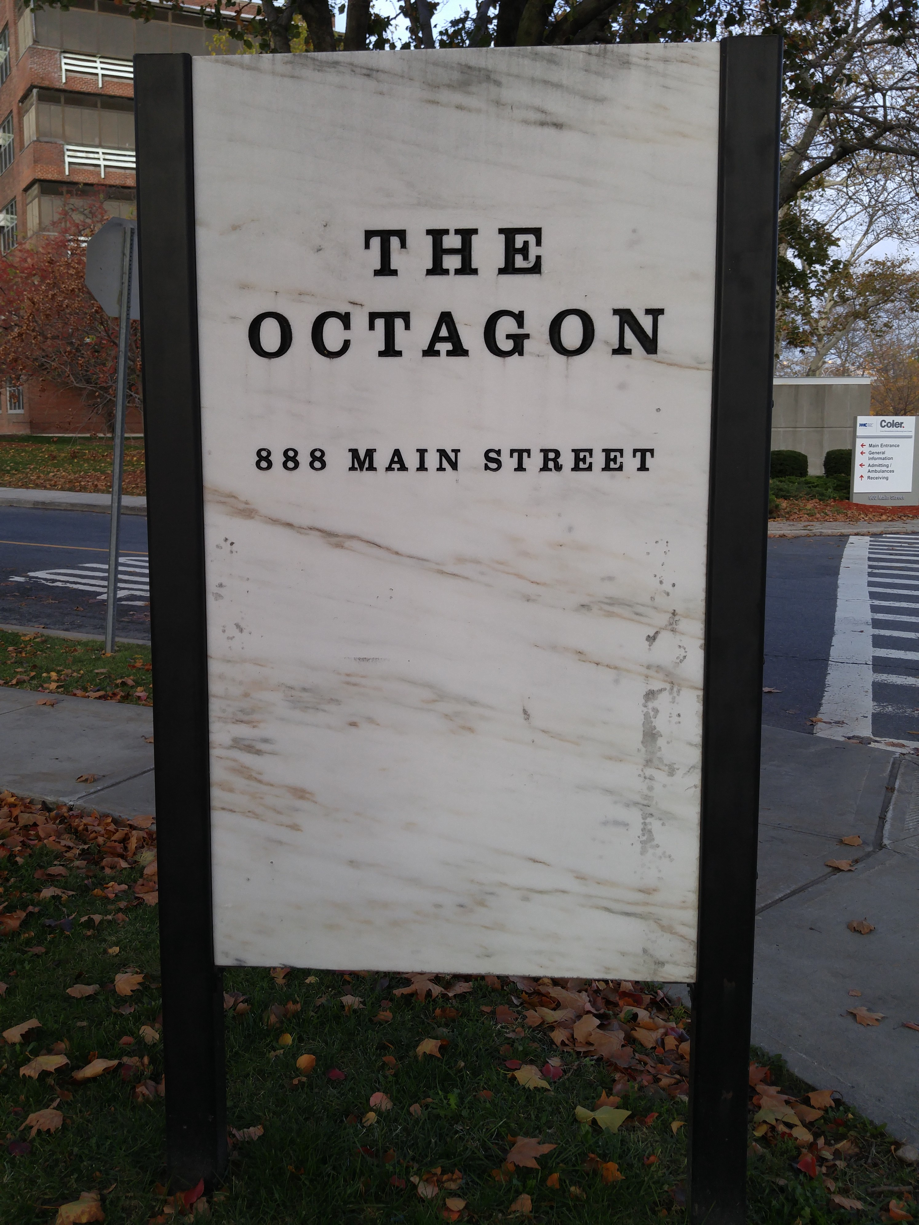 Welcome to the Octagon.