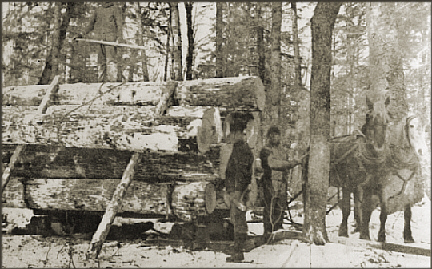 undated photos of loggers in the Black River area believed to be Mormon loggers