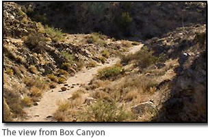 Box Canyon as it looks today. The Battalion route and Overland Stage route left a presence in this area