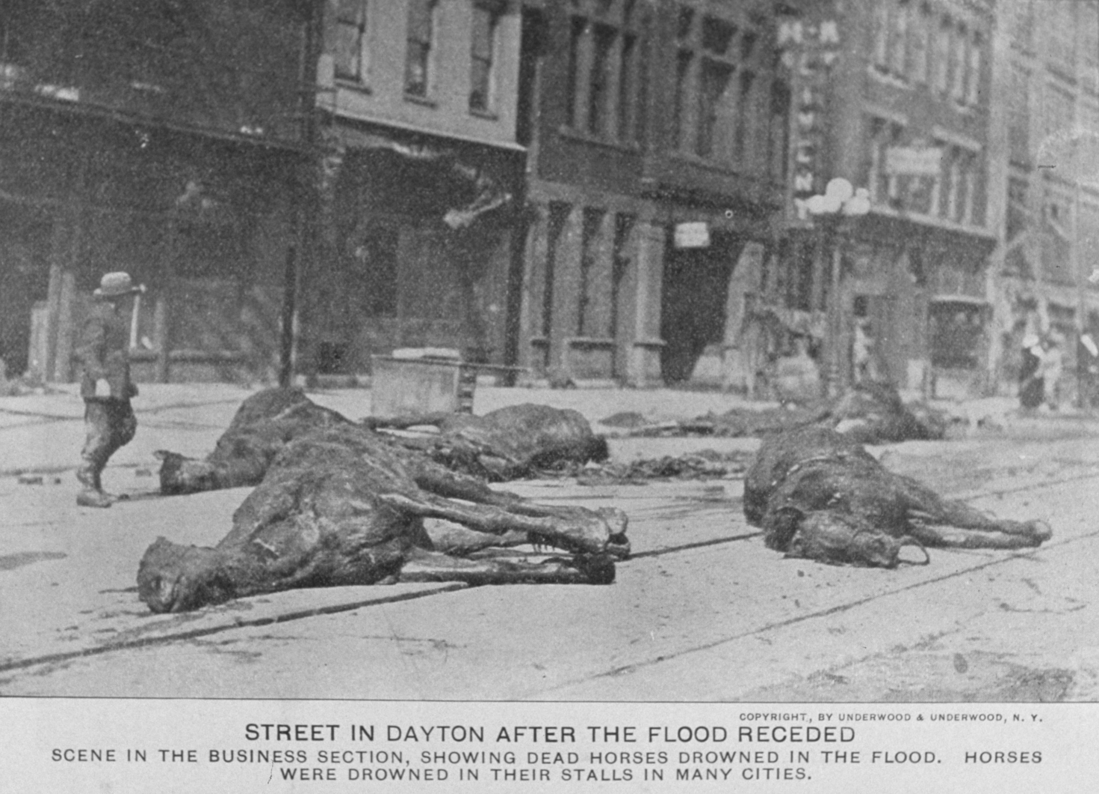 A street in Dayton after the floodwaters receded